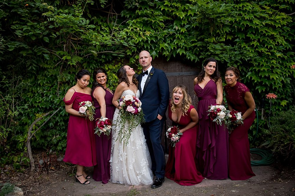 bride and groom with bridesmaids. Looks like a movie cover at hans fahden winery wedding