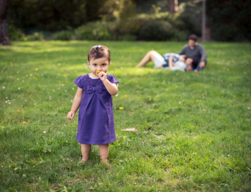Sellick Park | SSF