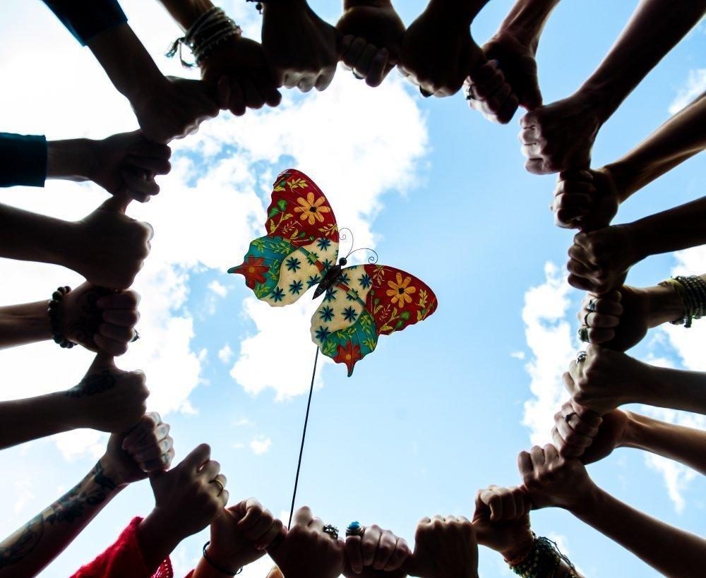 Butterfly Gathering| Tahoe