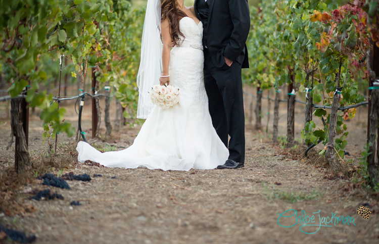 Chloe-Jackman-Photography-Musician-photography-Vintage-Estate-Wedding-Yountville089