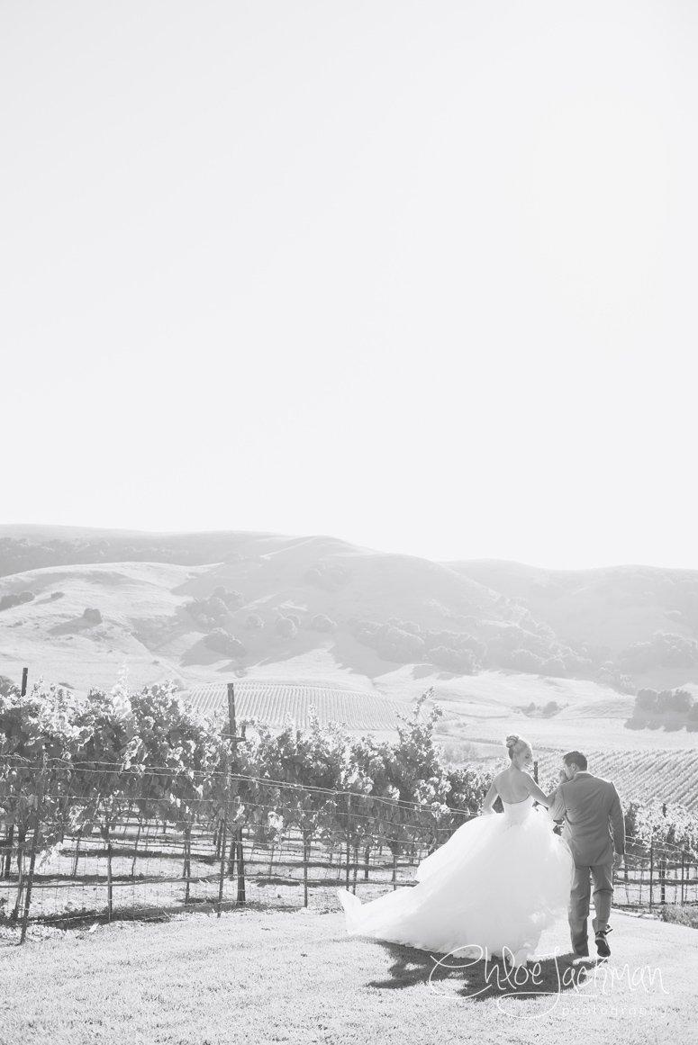 035-Chloe-Jackman-Photography-Viansa-Winery-Wedding-2015