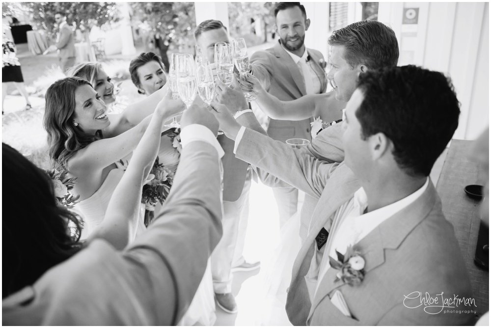 wedding party cheers with champagne
