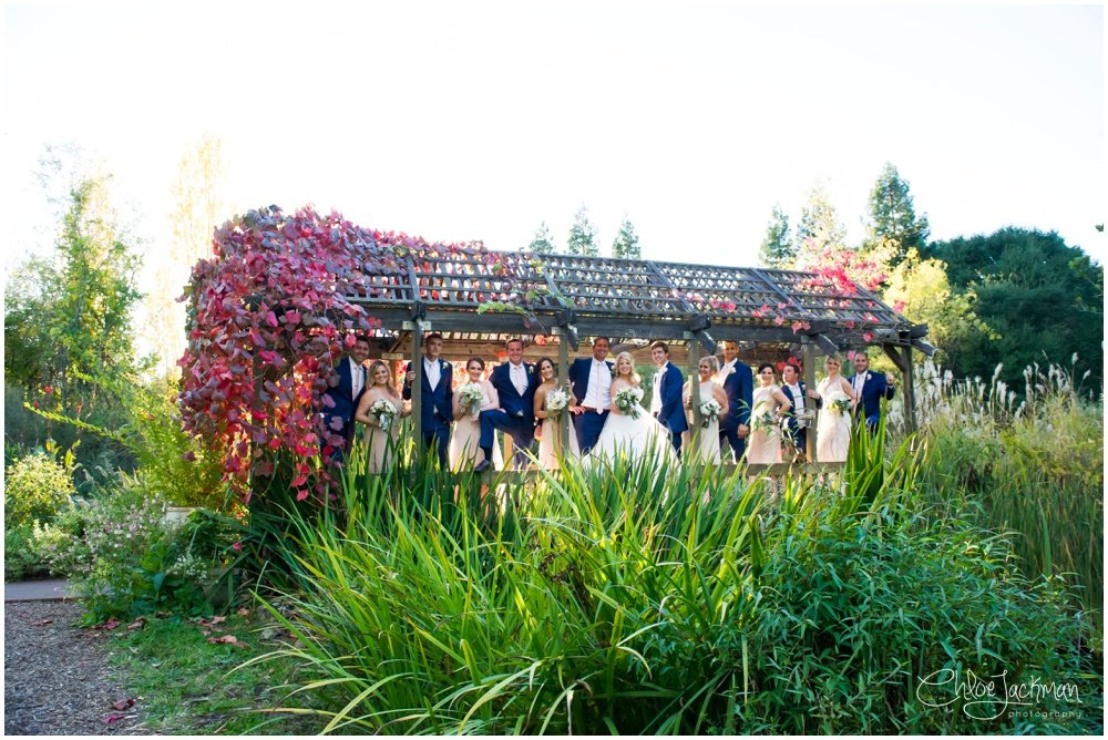 bridal party at outdoor hans fahden wedding in calistoga