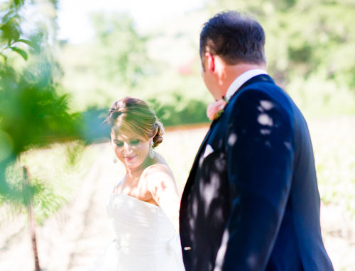 Stephanie & Jordan – A Destination Wedding in Wine Country