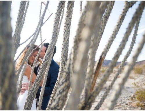 A Desert Wedding in Joshua Tree: Josh & Heather Elope!