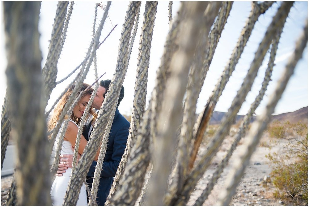 A Joshua Tree Desert Wedding