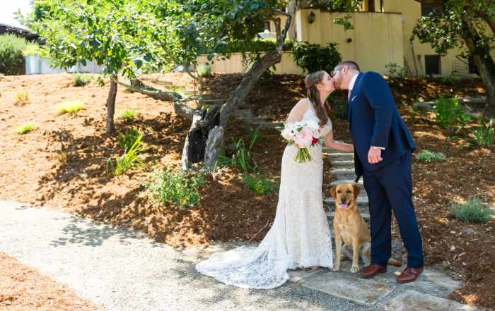 Bride and groom portrait at midsummer sebastopol wedding by chloe jackman photography
