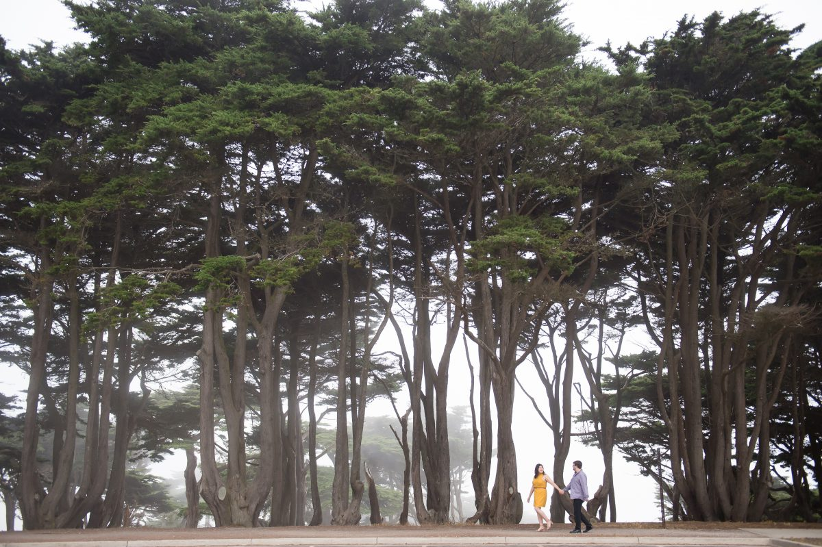 Foggy San Francisco Engagement Shoots by Chloe Jackman Photography