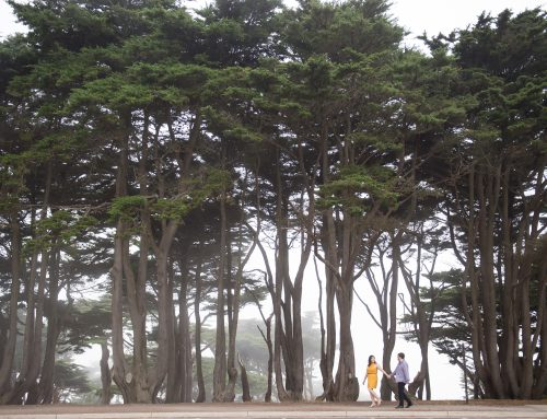 How To Handle Foggy San Francisco Engagement Shoots