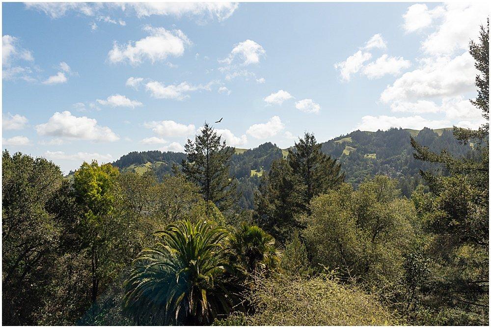 View from the top of Deer Park Villa wedding Fairfax