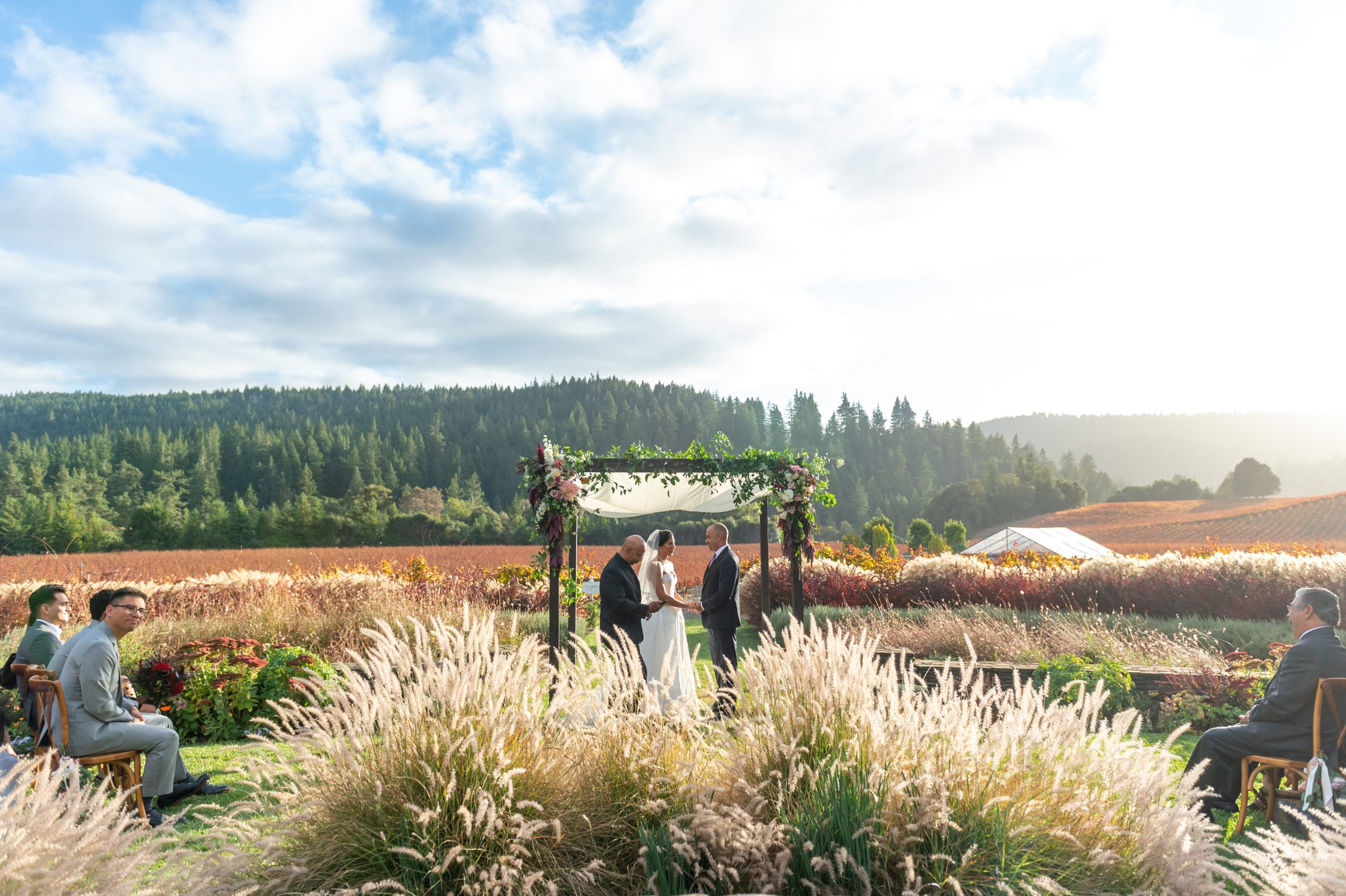 Golden eye winery wedding wide shot chloe jackman photography