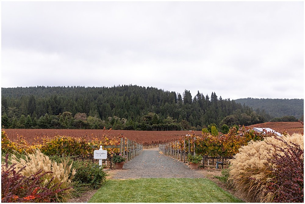 Fall colors Goldeneye winery wedding