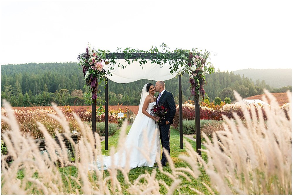 Beautiful fall vines at Goldeneye Winery wedding